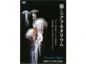 映像DVD「癒しのクラネタリウム」絶賛発売中!