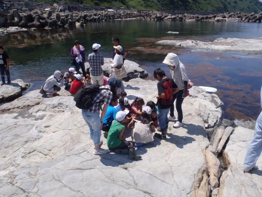 カギノテクラゲ採集とクラゲ学習会 のご案内