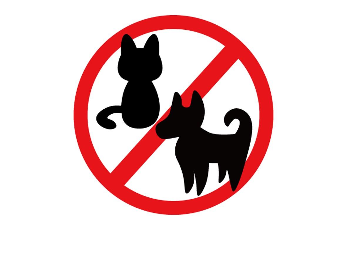 ペットを連れての入館はできません